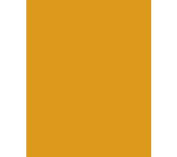 Polleria-la-Ibense