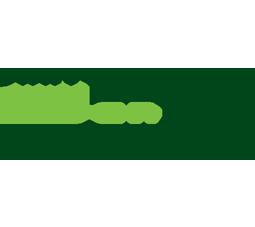 Logo cartonajes san Pascual